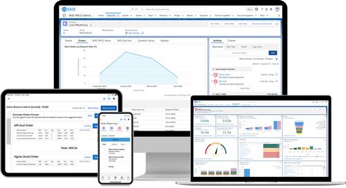 Skie Field Sales Accelerator Salesforce