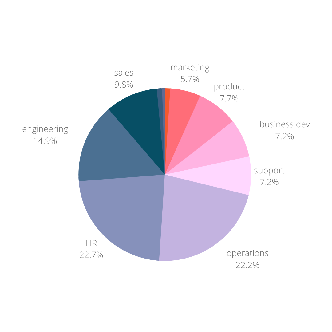 A pie graph showing the remote managers' role functions.