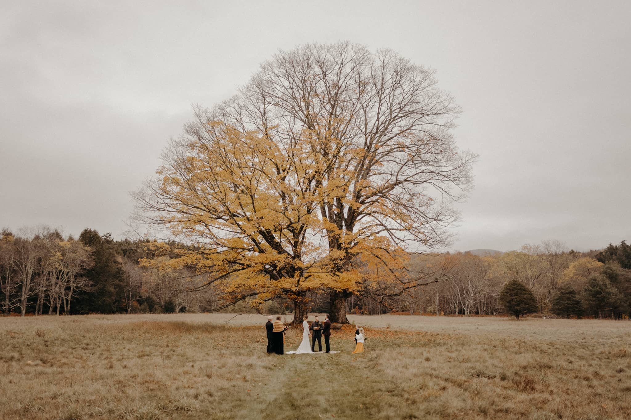 super intimate wedding in the Catskill Mountains. Photo by Victoria Selman