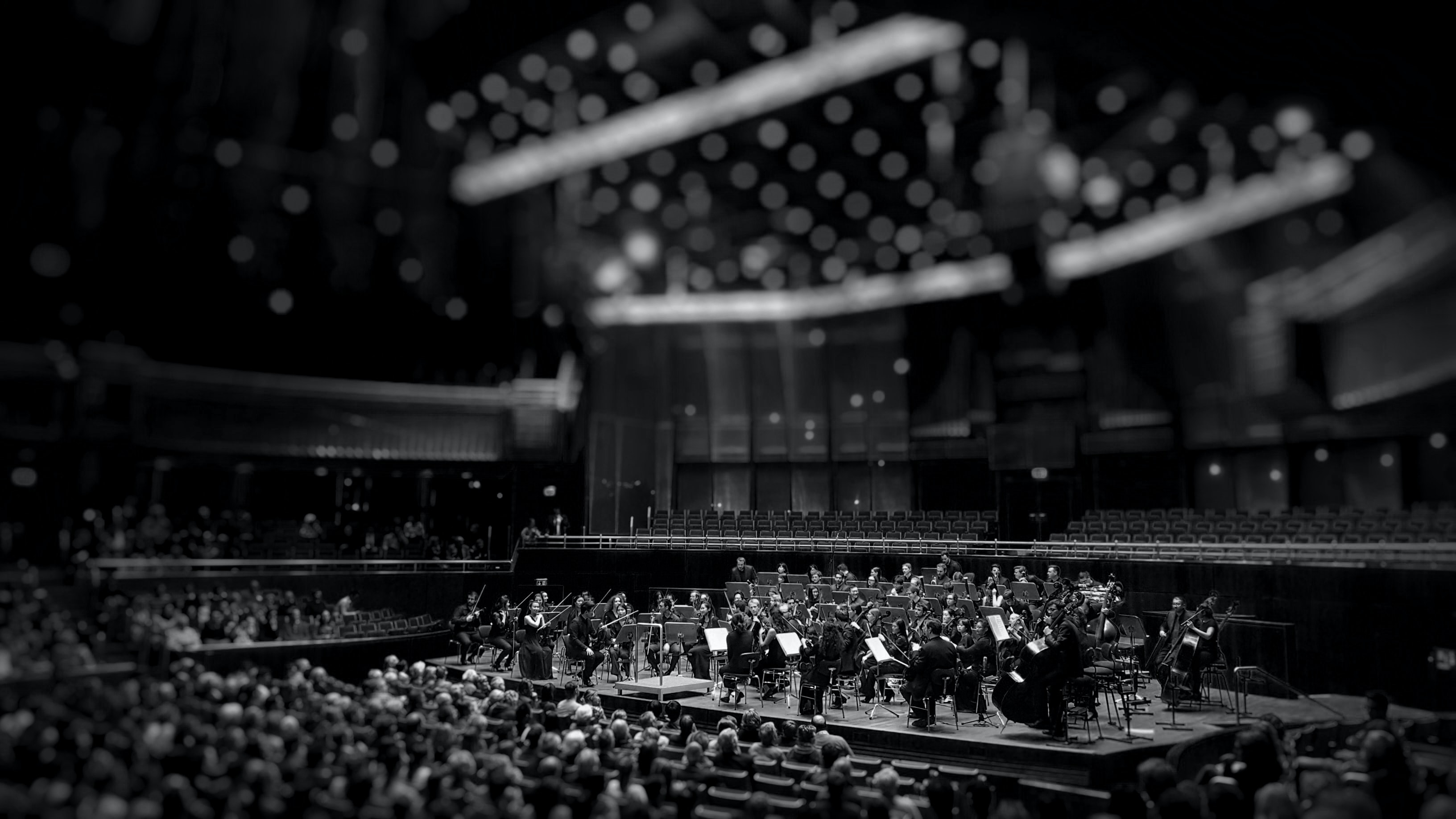 A grayscale photo of an orchestra with no conductor inside an auditorium.
