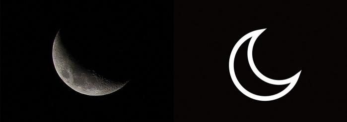 Cliona Crescent Image