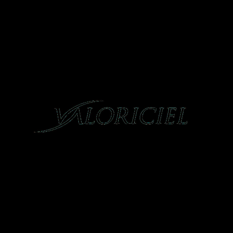 Logo valociciel