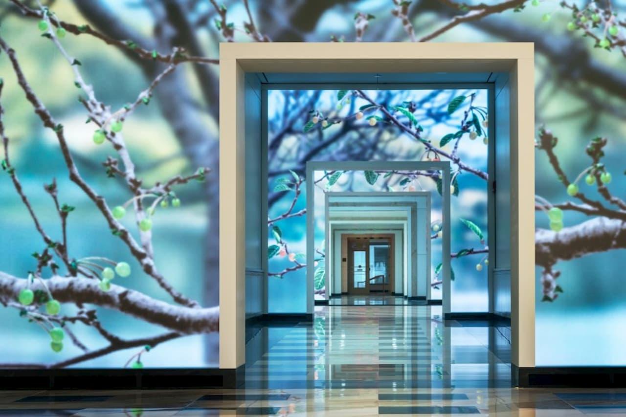Interactive Media Wall - Terrell Place, Washington D.C.