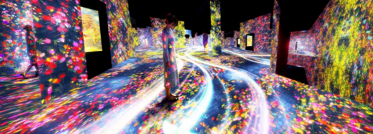 teamLab Borderless Art Exhibition - Tokyo