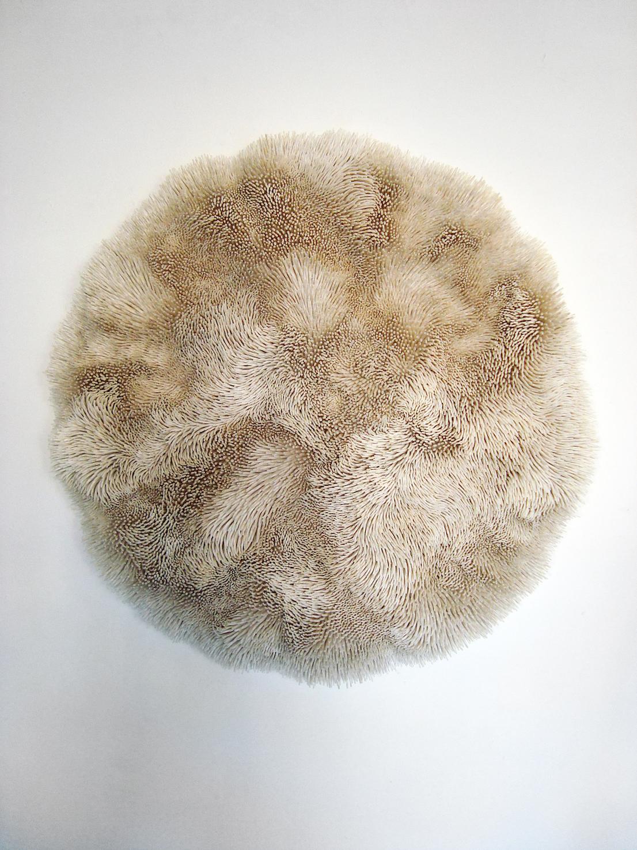 Pithváva Male