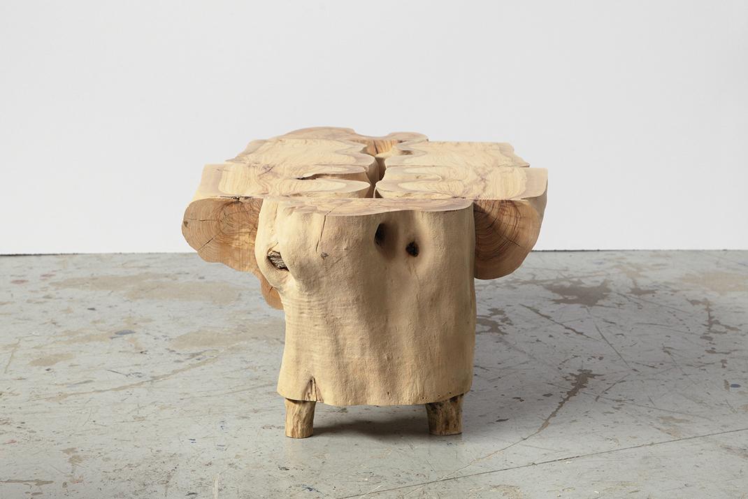 Sculptural Log Coffee Table