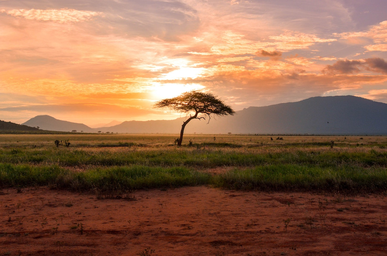 Production Companies Pushing the Limits on the African Plain