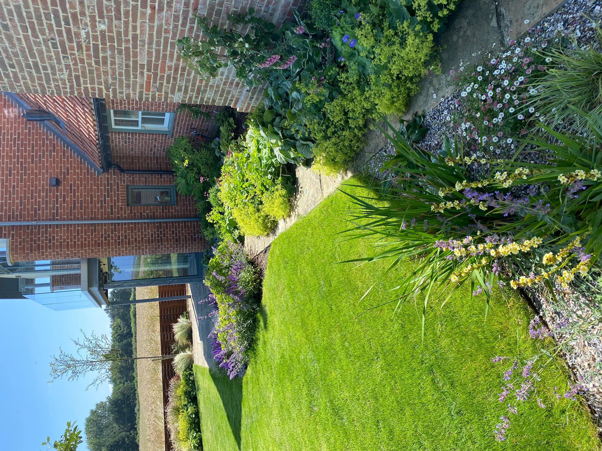 Norfolk coastal garden summer garden