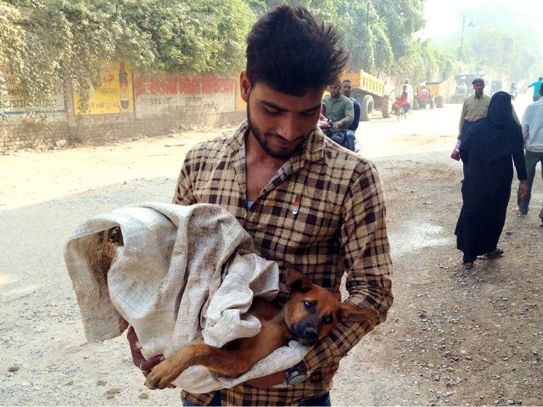 Volunteer holding a rescued dog