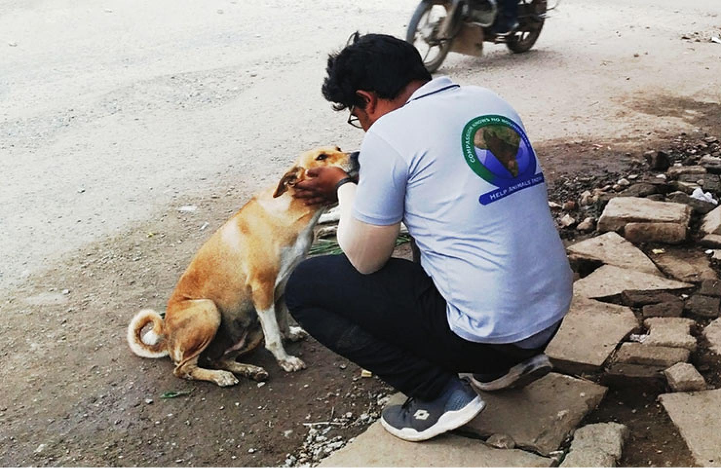 VfA member lovingly embraces a stray dog