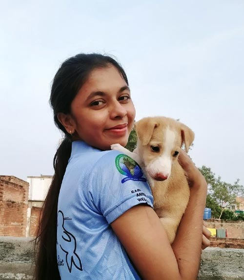 VfA Member hugging a puppy that is waiting to be adopted