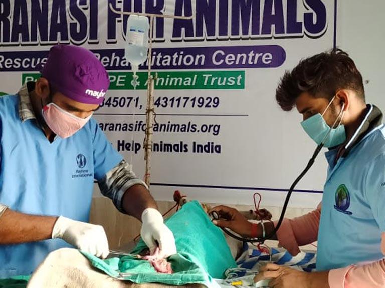 Dr Deepak performing surgery
