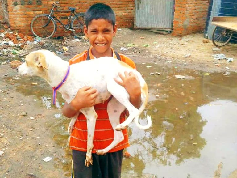 Child holding a rescued dog