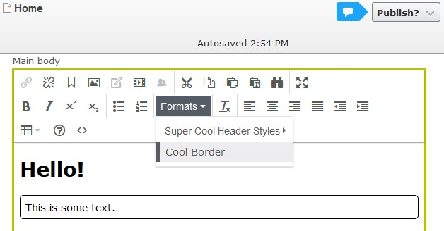 """Selected """"Cool Border"""" style previews style on the text in TinyMCE Editor."""