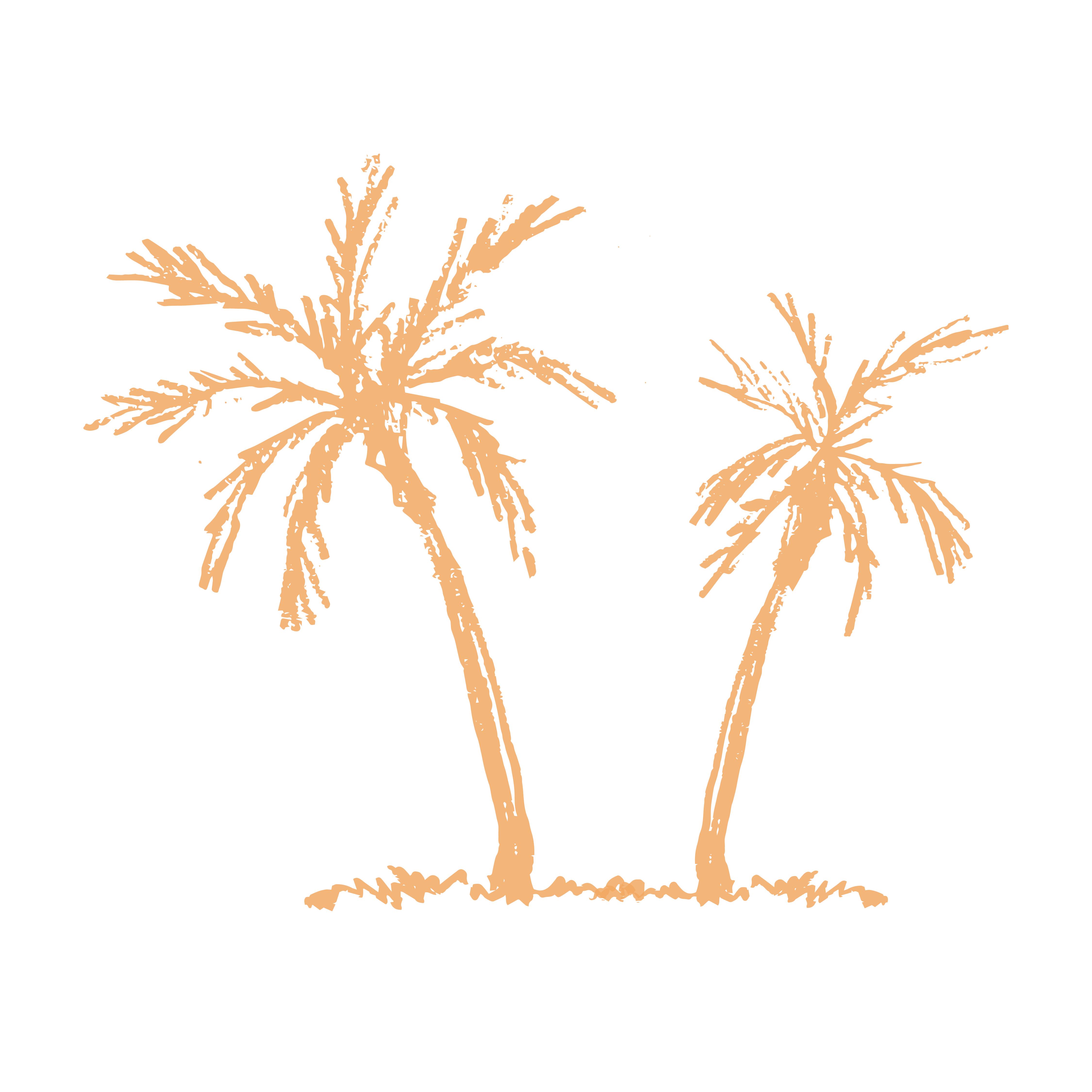 Ocean Sports Palm Tree icon