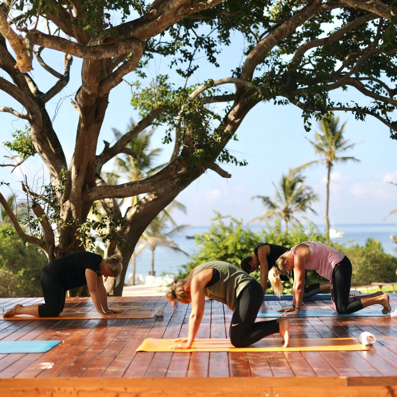 Yoga with Essenya