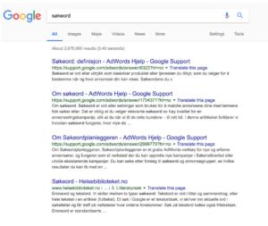Søkeord i google