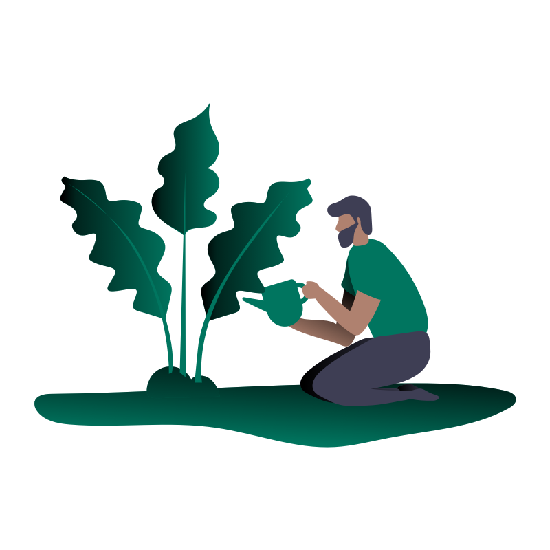 Illustration of a man on his knees watering a large plant.