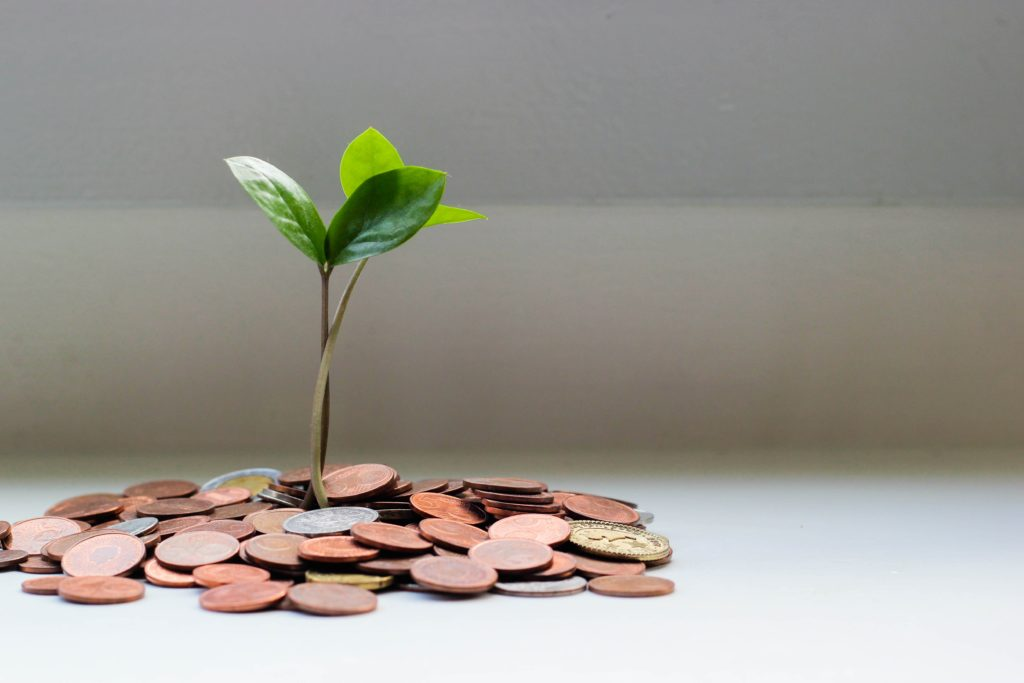 Starting an online business is like planting a money tree.