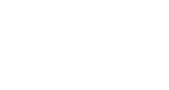 Logo partner Digital Studio Borealis