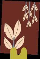 format icon