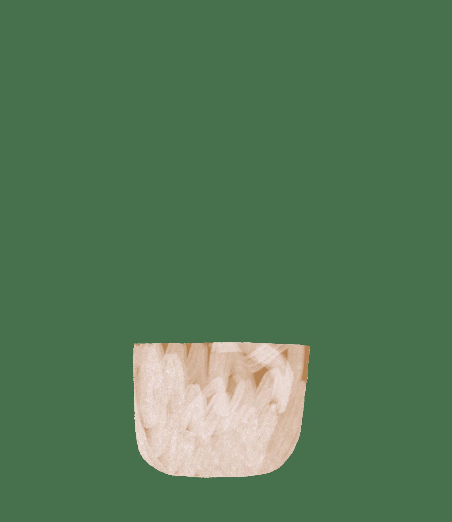 pilea pot