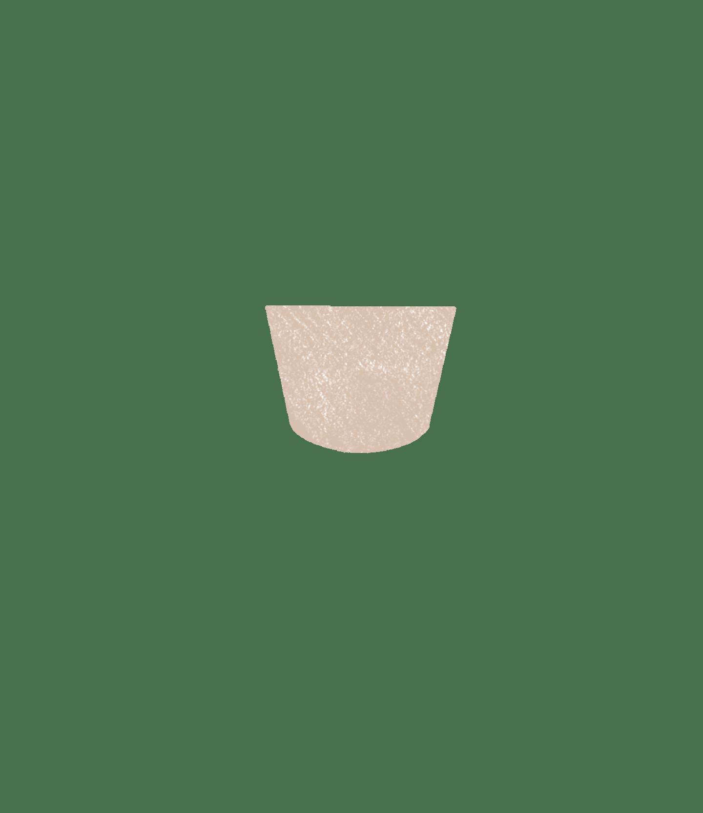 monstera adansonii pot