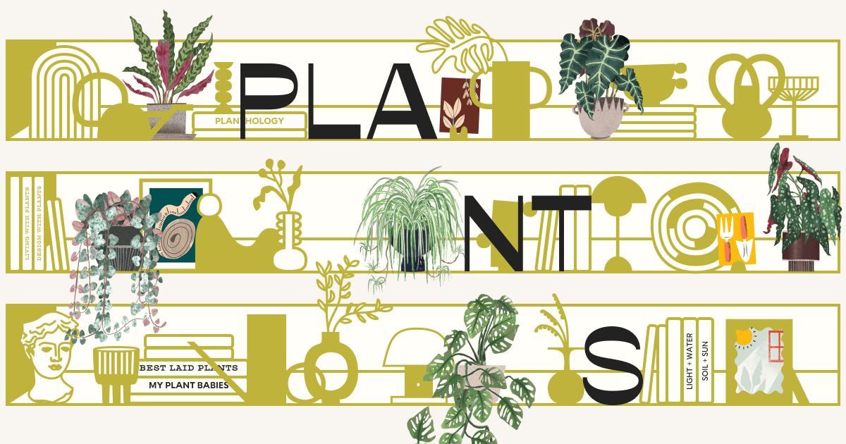 How many plants og:image