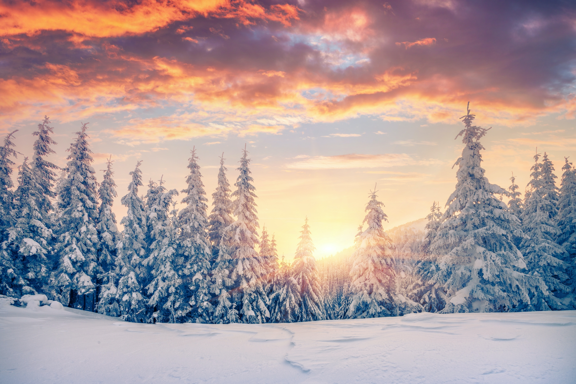 Winter Solstice 2020. The days will start getting longer. Daily more warm light to soothe the cold, winter darkness.