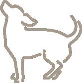 Dog Science
