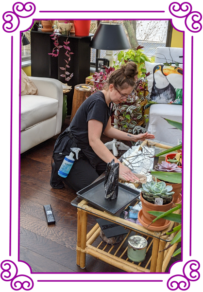 POSH Cleaning Service   POSH Maid Service - POSH Integrity Pricing image of woman cleaning