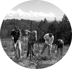 The Sheets Family are passionate  proprietors of Doc's Ranch Vineyard.