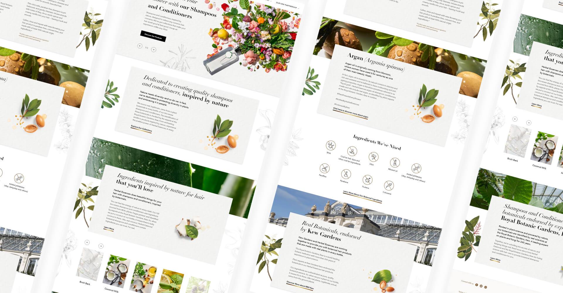 website design full