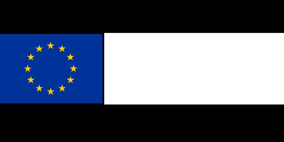 Logo European Social Fund
