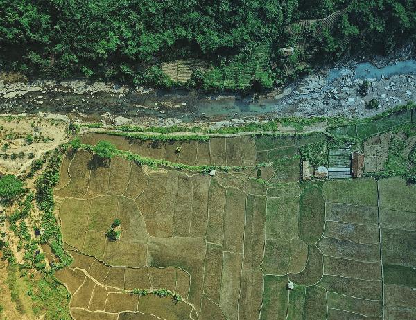 Aerial Image