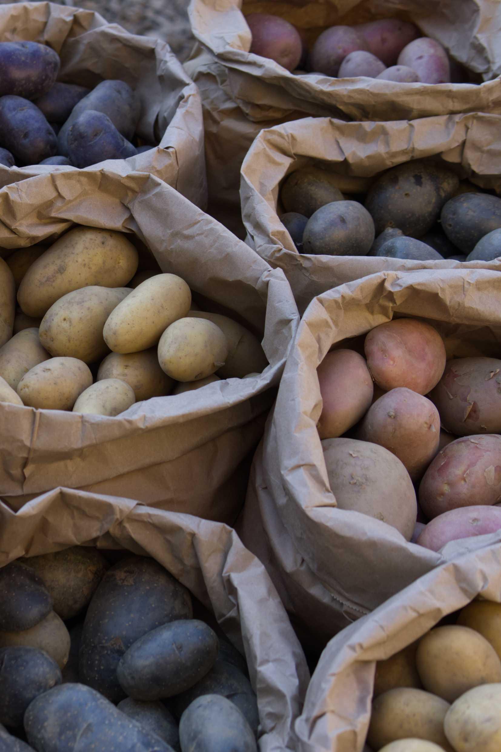 Diverse Kartoffelsorten in Papiertüten
