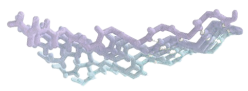 A purple and cyan fibril graphic