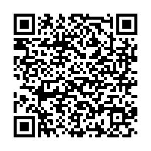 BEAT81 download app QR code