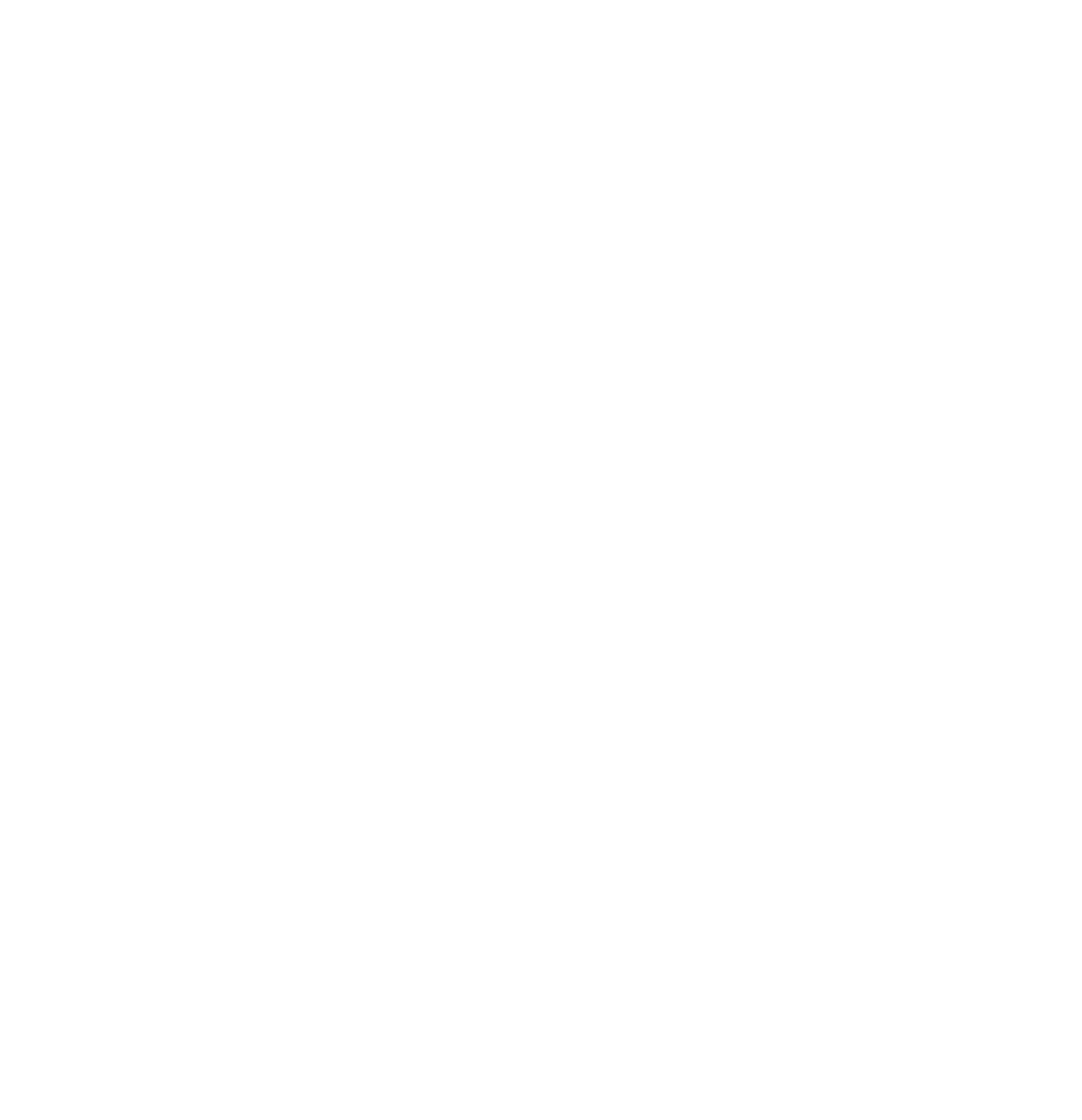 Berlins Neue Kinder BNK - Media Agency for the Now