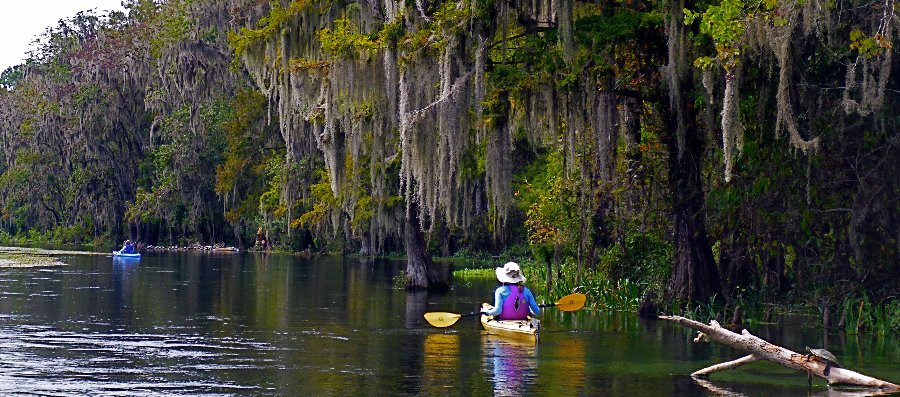 Come and enjoy a seven-mile strip of white sand beach, famous Gulf of Mexico sunsets, bird watching, and wildlife viewing. We'll paddle some of the beautiful and pristine waterways of the area.