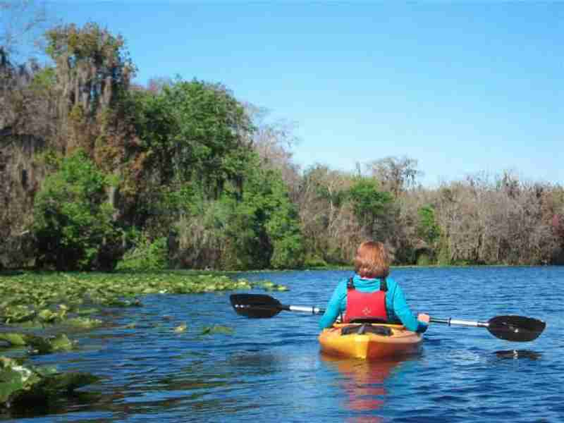 A lonesome kayaker on St. John's river by Blue Spring State Park.