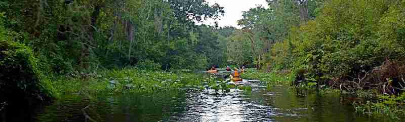 Paddling the beautiful and wild Blackwater Creek.