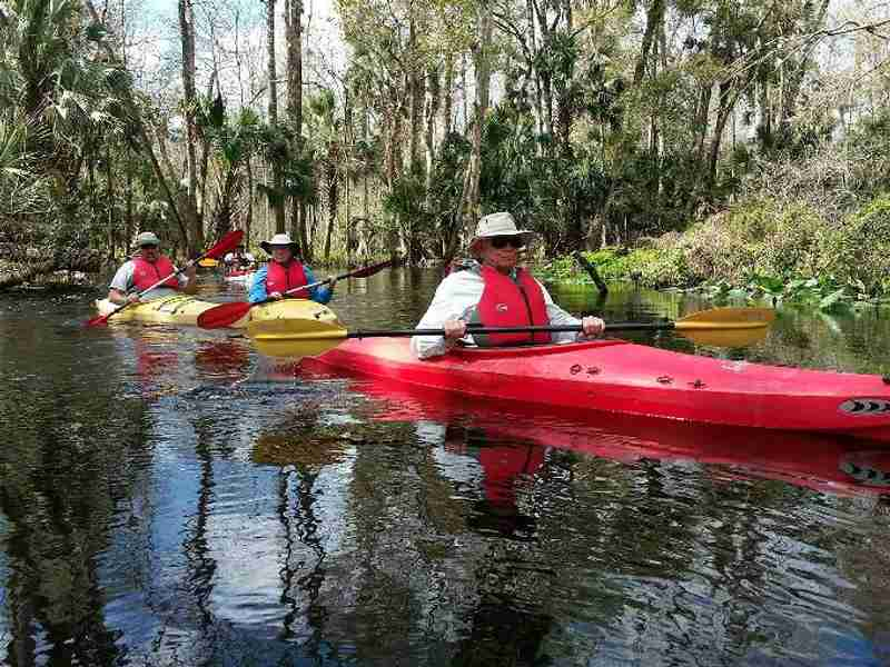 Kayakers enjoying the peaceful environment of Blackwater Creek.