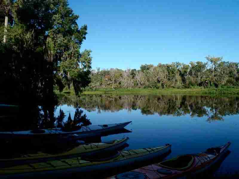 Peace and beauty on the Wekiva River.