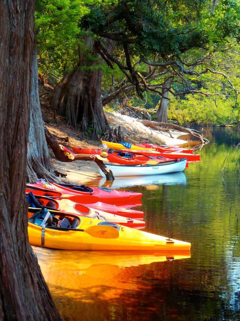 Explore beautiful and remote places only be discovered by kayak.