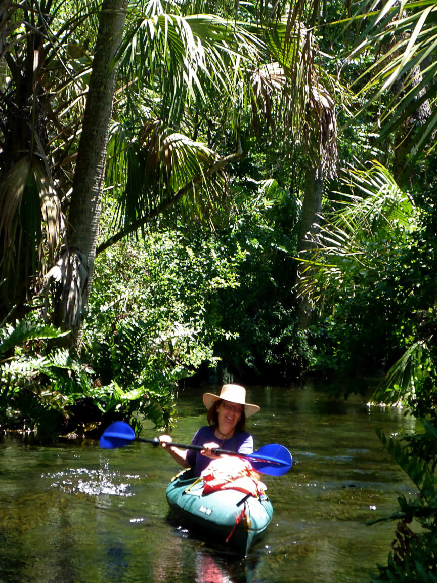 Paddle through arrow canals surrounded by Floridian fauna.
