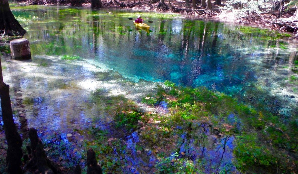 One of the many springs that feed the rivers of the Emerald Coast.