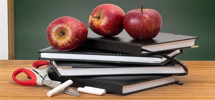 Sparks School Head Lice Policies