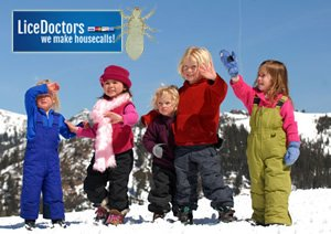 Michigan's Cold Weather Doesn't Discourage Head Lice