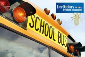 Western Massachusetts School Lice Policy